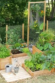 Small Rock Garden Pictures by Best 25 Small Gardens Ideas On Pinterest Small Garden Design