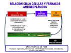 <b>antibióticos</b> antitumorales