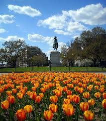 Washington Circle