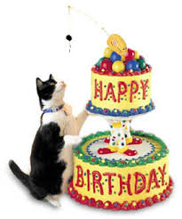 Happy Birthday Cat 32426