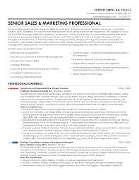 Todd W  Smith   Senior Sales  amp  Marketing Professional Resume