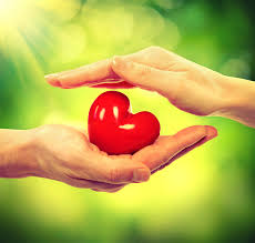 Ten Ideas to Improve Your Social Media Influence Valentine Heart in Man and Woman Hands over Nature Green Sunny B