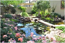 backyards cozy backyard streams backyard ideas backyard design