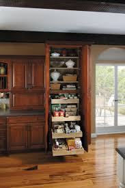16 best pantries images on pinterest organized kitchen kitchen