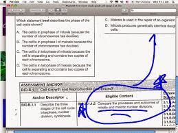 ec honors biology april 2014