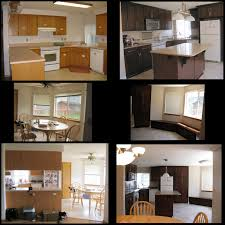 Restaining Kitchen Cabinets Stain Ideas For Kitchen Cabinets Nice Home Design