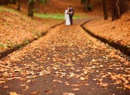 Understanding the Importance of Marriage Records   VitalChek Blog VitalChek Blog