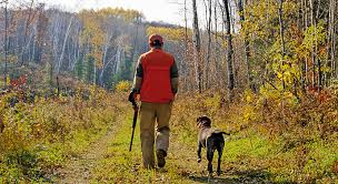 grouse hunting enjoy fall season opens sept 19