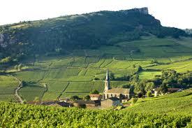 news of the wine world u2013 wine wit and wisdom