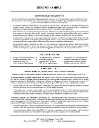 Career Goals Examples For Resume by Human Resources Resume Examples Resume Format 2017