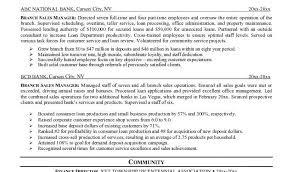 Sales Manager Resume Examples for Effective Bank Sales Management     Dawtek Resume and Esay
