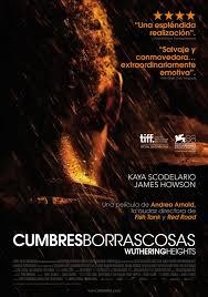 Cumbres borrascosas (2011) [Latino]