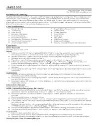 Director Of It Resume Examples by Professional Data Analytics Manager Templates To Showcase Your