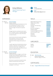 resume examples for project managers digital marketing project manager resume example download pdf file