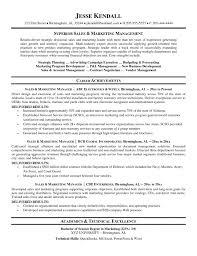 Executive Sales Resume Sales Executive Resume Account Management     Brefash
