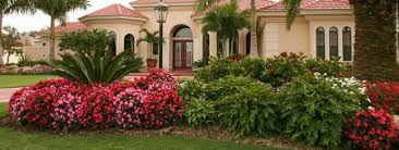 landscaping southern landscaping ideas
