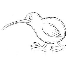 kiwi bird wet hair coloring pages kiwi bird wet hair coloring