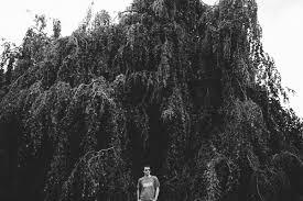 Promo Code Home Decorators Willow Tree Portraits Sej 36sejalsoham Com Sej 37sejalsoham Loversiq