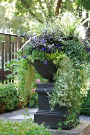 Fall Landscaping Ideas by Fall Annuals Container Planter Front Yard Urn Landscape Design