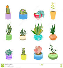 Succulents Pots For Sale by Succulents And Cactus In Pots Of Different Colors Cute Flat