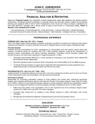 Business Development Resume Examples  business resumes  business