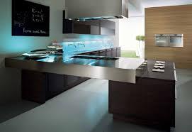 outstanding modern style kitchen cabinets with dark purple kitchen