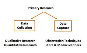 Primary Research Paper Definition PLOS