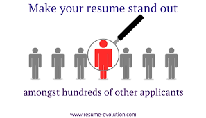 Professional Resume Writing Service says your resume should look good Resume Evolution