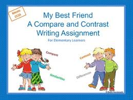 Summary my best friend essay student essays