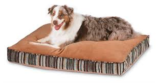 what to look for in dog beds for large dogs best dog bed