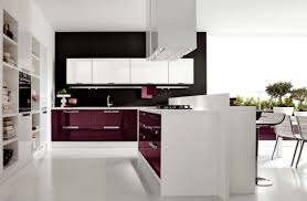 kitchen shaker kitchen cabinets kitchen cabinets online kitchen