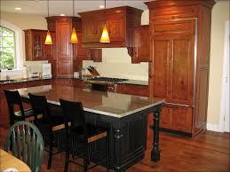 Kitchen Design Backsplash 100 Houzz Kitchen Backsplashes Houzz Kitchen Backsplash