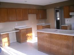 How To Paint Veneer Kitchen Cabinets Repainting Oak Kitchen Cabinets How To Inspirations Also Painting