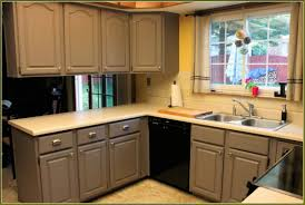 Kitchen Cabinet Replacement by Kitchen Lowes Kitchen Cabinet Hardware Mepla Hinge Replacement