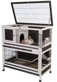 best 25 pet cage ideas on pinterest hedgehog cage the hamster