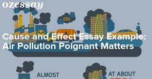 Cause and Effect Essay Example  Air Pollution Poignant Matters OZessay com