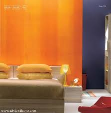 asian paints royale play special effect for feature walls wall