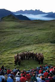 %name I Suoni delle Dolomiti 2011   programma Valle di Fiemme