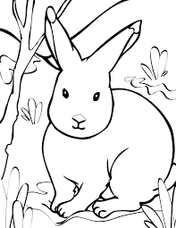 valentine coloring page snapsite me
