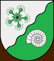 Tensfeld