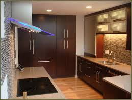 Bathroom Vanity Door Replacement by How To Replace Cabinet Doors With Glass Best Home Furniture