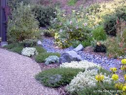 garden rockery ideas 165 best drought tolerant landscaping ideas images on pinterest