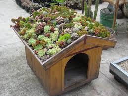 Rooftop Garden Ideas 310 Best Rooftop Gardens Images On Pinterest Rooftop Gardens