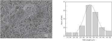conduction mechanisms in p vdf trfe gold nanowire composites