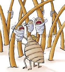 Image result for student lice cartoons