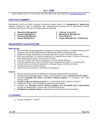 Executive Resume Formats And Examples  template for executive       executive resume examples