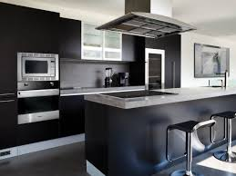 Contemporary Kitchen Designs 2013 Black And White Modern Kitchen Design With Dark Cabinetry Ideas