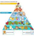 piramide de alimentos