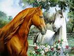 More horse wallpapers! - Horses Wallpaper (15705283) - Fanpop fanclubs