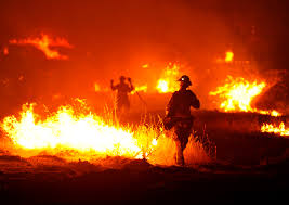 Willow Wildfire California by California Firefighters Make Progress In Fight Against Flames As